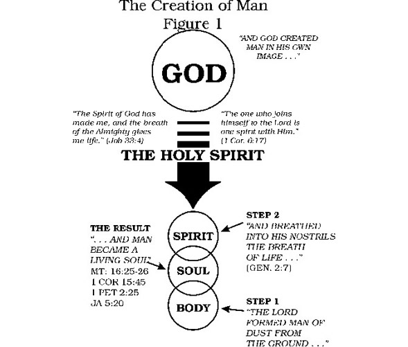 nature and components of man What is a worldview  the meaning of the term worldview (also world-view, world view,  beliefs about the nature and purpose of man in general and,.